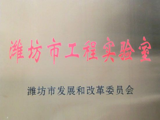 Weifang City Engineering Laboratory